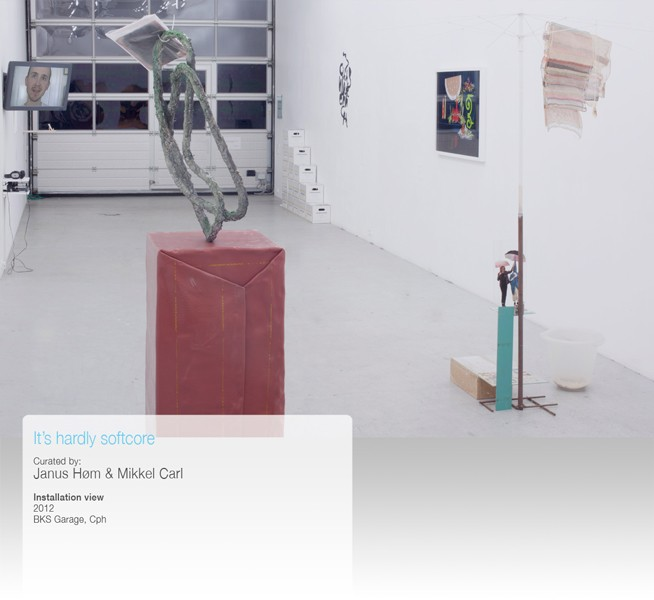 http://mikkelcarl.com/files/gimgs/th-34_008-Installation-view.jpg