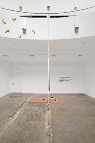 http://mikkelcarl.com/files/gimgs/th-86_020_Installation-view.jpg