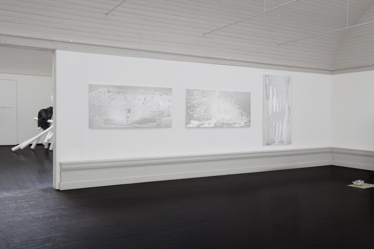 http://mikkelcarl.com/files/gimgs/th-89_006_installation-view.jpg