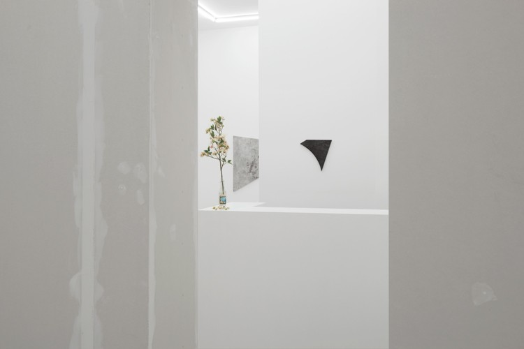 http://mikkelcarl.com/files/gimgs/th-89_025_Mikkel-Carl_Installation-view.jpg