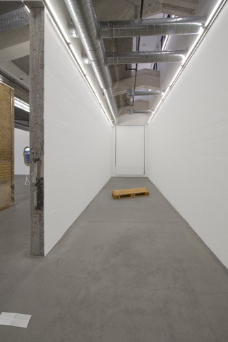 http://mikkelcarl.com/files/gimgs/th-89_029_installation-view.jpg