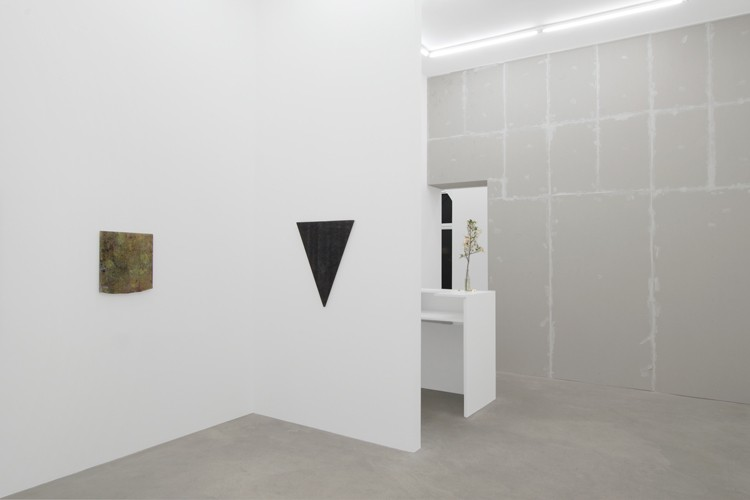 http://mikkelcarl.com/files/gimgs/th-89_036_Mikkel-Carl_Installation-view.jpg
