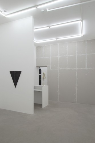 http://mikkelcarl.com/files/gimgs/th-89_040_Mikkel-Carl_Installation-view.jpg